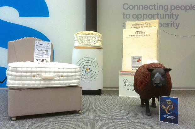 Display of bedding, including an artificial sheep.